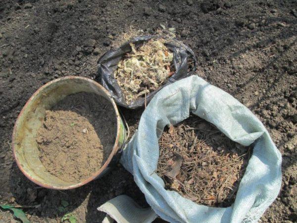 Выбор почвы для рододендрона